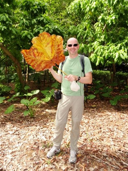 12.3-BotanicGarden