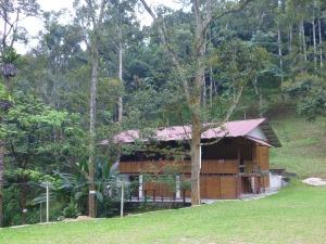 5.1-Rainforest-Resort